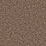 Exceptional II Tumbleweed Multi Tone carpet by Dreamweaver