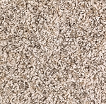 Impressive Approach Champagne Bubble Sorona wide width carpet by Mohawk