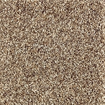 Nature's Luxury I Cobble Path Multi Tone carpet by Mohawk