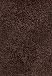 Limited Stock - Avenger Coffee Bean Saxony-Texture Carpet