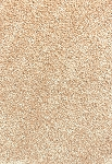 Limited Inventory - Mellow Haven Pearl Glaze Sorona Silk Carpet
