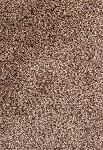 Touchstone Colorwash Multi Tone Carpet