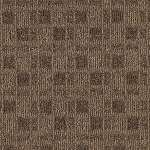 Urban Square Earthen Brown Commercial/Home Carpet