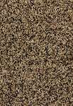 Limited Stock - Pb65 3761 Nubrisa Carpet