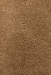 Limited Inventory - Edgy Chic Char Brown Carpet by Karastan
