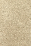 Limited Inventory - Edgy Chic Natural Fiber Carpet by Karastan