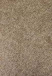 Attractive Style Frosty Spice Carpet by Mohawk