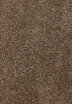 Limited Inventory - Delicate Finesse Basketry Carpet by Karastan