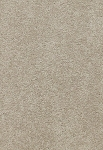 Limited Inventory - Delicate Finesse Mystic Carpet by Karastan