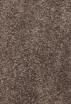 Limited Inventory - Delicate Finesse Restoration Carpet by Karastan
