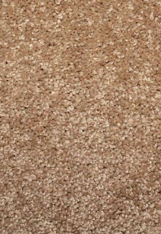 Limited Stock Magic Days 10 Courtyard Sorona Ultra Carpet