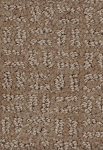 Pristine View Royal Pecan Designer Pattern Carpet