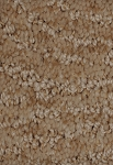 Scenic Look Beach Shell Designer Pattern Carpet