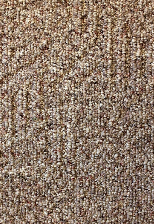 Rillitto Doe Skin Carpet By Mohawk
