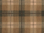 Nourison 50 to Infinity - Grand Tartan PT48 Olive-B Area Rug