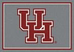 College Spirit  00387 Houston