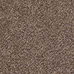Limited Stock - Ride It Out 211 Multi Tone Carpet