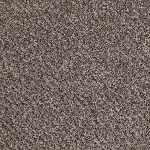 Limited Stock - Ride It Out 710 Multi Tone Carpet