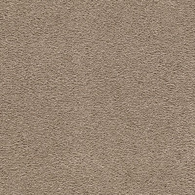 Limited Inventory - Mellow Haven Wildwood Sorona Silk Carpet