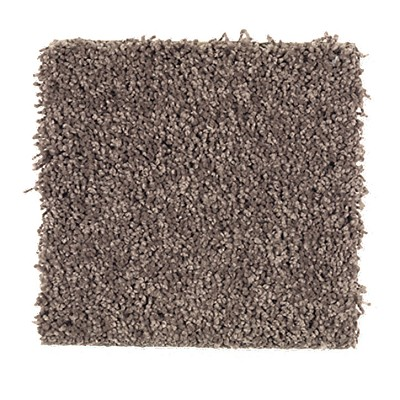 Limited Stock - Impressively Soft I Velvet Brown Carpet