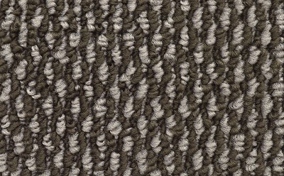 SP369 color 03 Home Office carpet by Mohawk