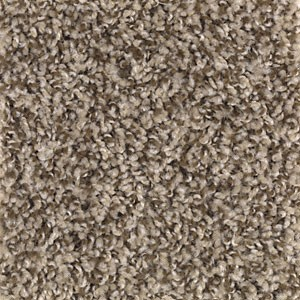 Seeker Coastal Beige Multi Tone Carpet By Mohawk