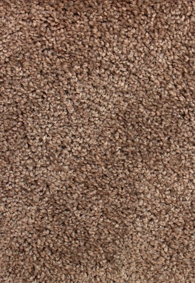 Limited Stock - Avenger Brown Sugar Saxony-Texture Carpet