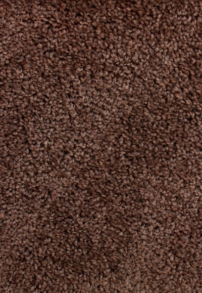 Thumbnail Asp File Assets Images Products Carpet Additions 102715 Avenger Chocolate 1121681104 Jpg Ma 400 Maxy 0