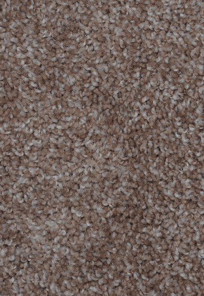 Dynamic Energy Mesquite Chip Saxony-Texture Carpet