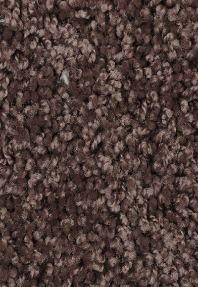 Limited Stock - Ride It Out Thatch Carpet Saxony-Texture Carpet