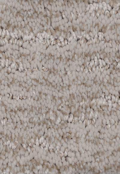 Mohawk Style Stamina - Pale Taupe Carpet
