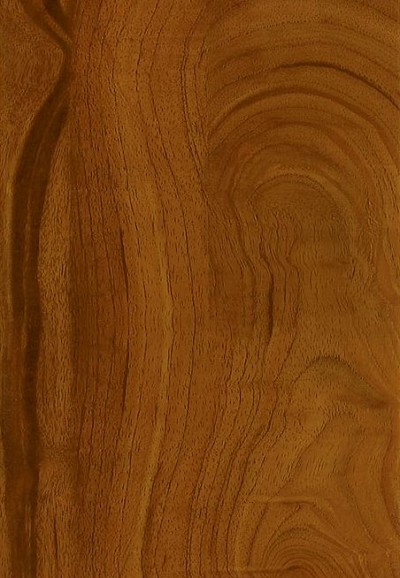 Armstrong LUXE Plank Best Exotic Fruitwood - Nutmeg Luxury Vinyl Tile