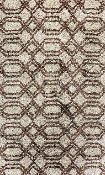 Dynamic Rugs Passion 6202-102 Ivory Area Rug
