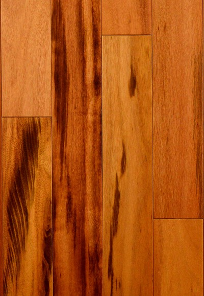 "Ribadao PLTW31/4-23 Natural 3/4"" X 3 1/4"" Tigerwood Hardwood Flooring"