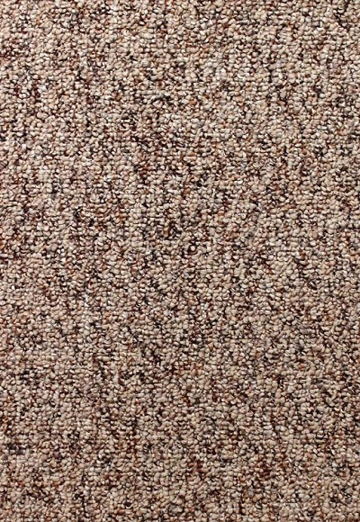 Creative Nature White Pepper Carpet by Mohawk