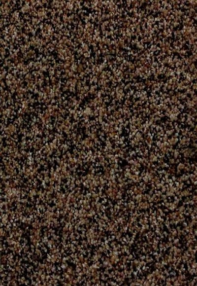 Limited Stock - Pb65 3588 Nubrisa Carpet
