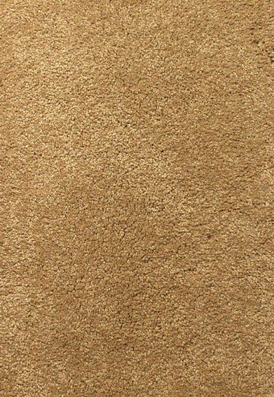 Limited Inventory - Edgy Chic Shore Beige Carpet by Karastan