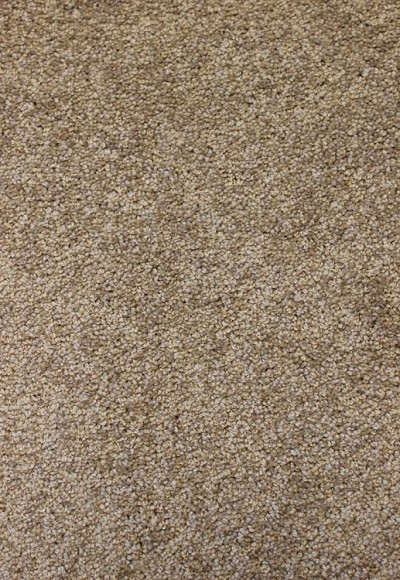 Limited Stock - Attractive Style Frosty Spice Carpet by Mohawk