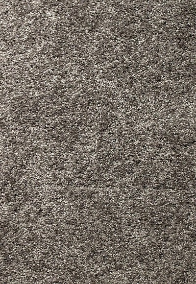 Limited Stock - Fabric of Life Ebony Field Carpet by Mohawk