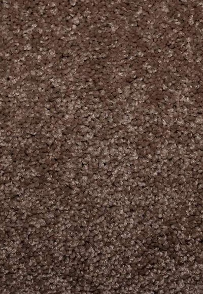 Limited Stock - Magic Days 12 Arrowhead Sorona Ultra Carpet