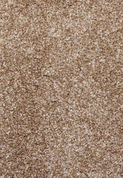 Limited Stock - Knightly Hearth Beige Sorona Carpet