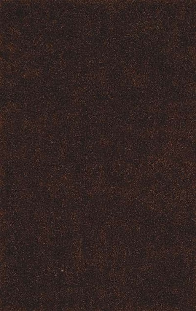 Illusions IL69 Chocolate Area Rug by Dalyn