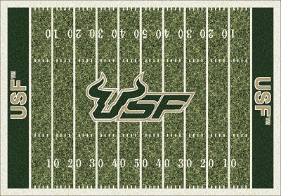 College  HomeField 01352 South Florida