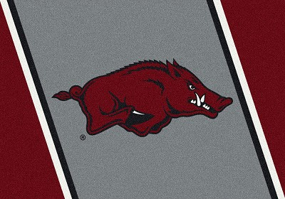 College Spirit  68884 Arkansas