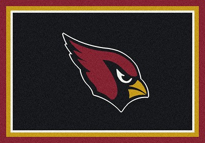 NFL Spirit 00902 Arizona Cardinals