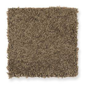 Mohawk Skillful Intent - Sassafras Carpet