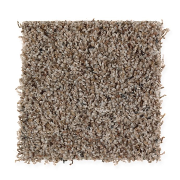 Mohawk Revealing Beauty - Natures Blend Carpet