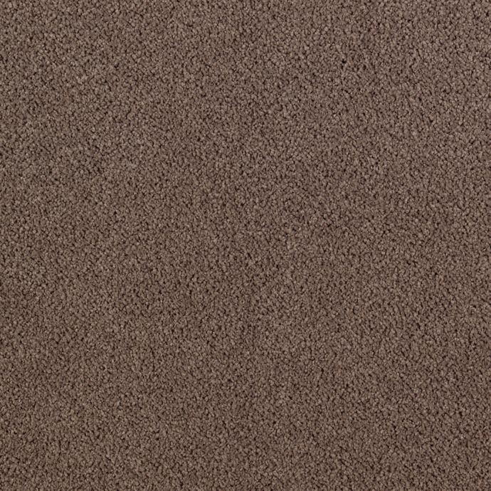 Karastan Lavish Affair - Brindle Carpet