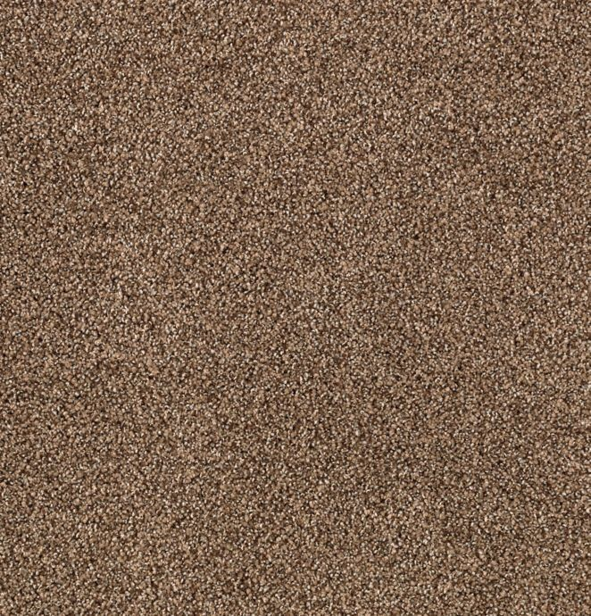Karastan Upscale Living - Sequoia Carpet