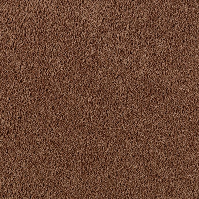 Karastan Simply Spectacular - Cigar Leaf Carpet